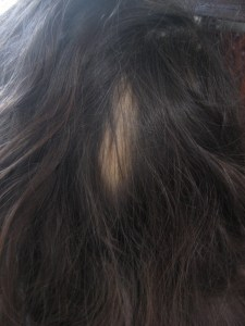 La reconstitución de los cabello después de la permanente química del medio